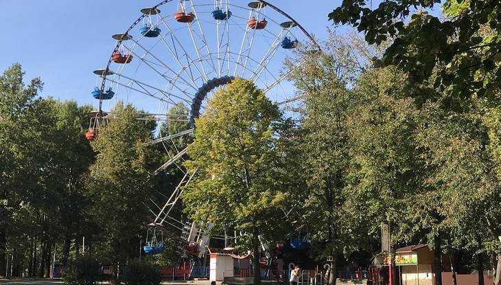 Брянские власти пообещали заменить старое колесо обозрения в парке