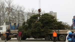 Брянцам предложили выбрать главную новогоднюю елку города