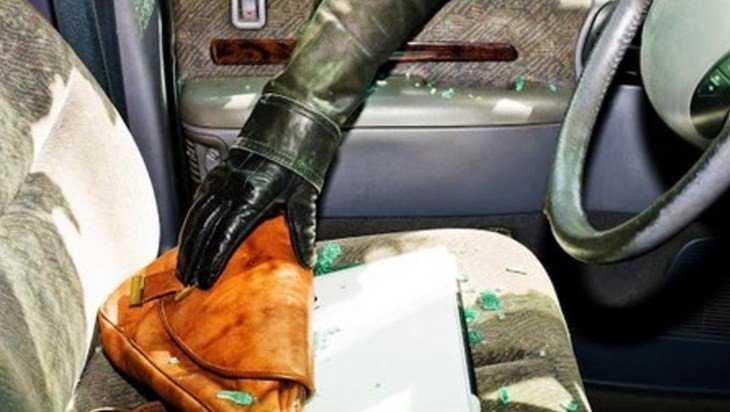 В Навле брянский уголовник украл борсетку из стоявшего автомобиля
