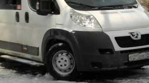 Водитель маршрутки № 166 в Брянске покалечил пешехода