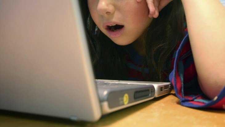 Брянец совратил по Интернету 11-летнюю девочку в Волгограде