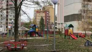 Брянский бизнесмен поставит игровой городок вместо спиленных качелей
