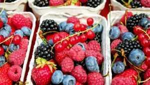 Почему нужно употреблять в пищу фрукты и ягоды