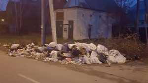 В Брянске опять появились мусорные горы
