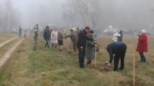 В клинцовской Речечке посадили аллею в память о сожженной деревне