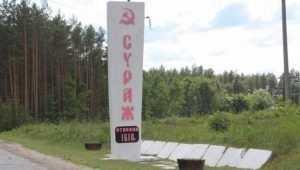 В Сураже построят за 600 миллионов рублей энергетический узел