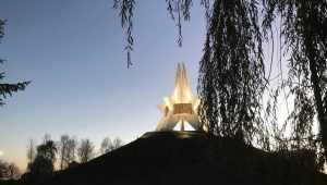 В Брянской области 17 ноября похолодает до 10 градусов мороза