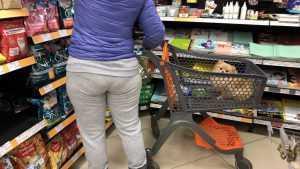 Брянцев возмутила дама с собачкой в тележке продуктового магазина