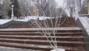 В Брянске лестницу к набережной украсили перед Новым годом