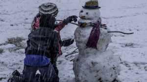 В Брянскую область 22 декабря вернётся оттепель с мокрым снегом