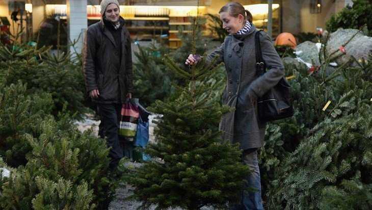 В Брянске 20 декабря открылись ёлочные базары