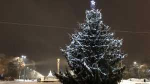 Новогоднюю елку в главном парке Брянска украсили гирляндой и звездой