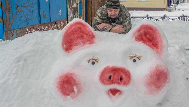 Всем жителям Брянской области подложили роскошную розовощекую свинью