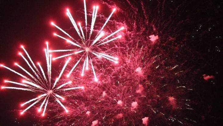 Власти Брянска указали места для фейерверков и новогодней пальбы