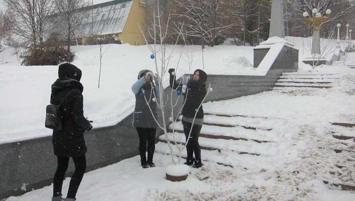 В Брянске школьники и студенты украсили заснеженные деревья