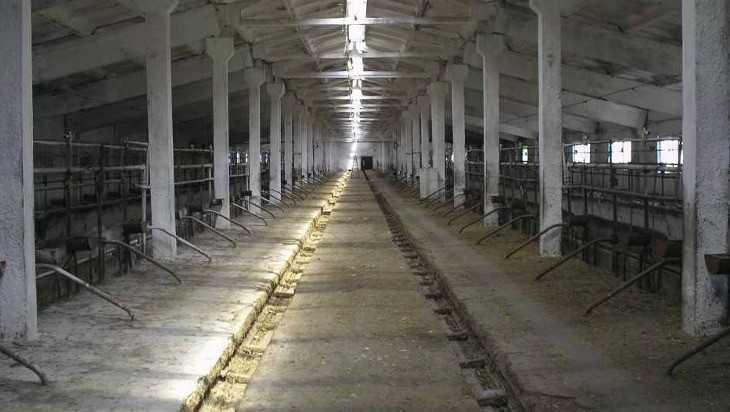 Сельские подростки «распотрошили» ферму в Унечском районе