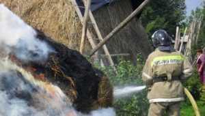 Брянца за поджог 414 тонн соломы наказали принудительным трудом
