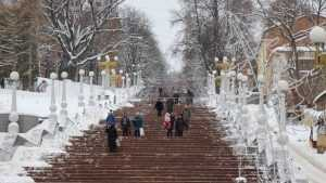 Брянской области 30 декабря пообещали снег и 12-градусный мороз