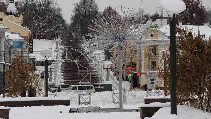 Синоптики рассказали, какой будет погода в Брянской области в январе