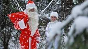 В новогоднюю ночь в Брянске будет чудесная зимняя погода