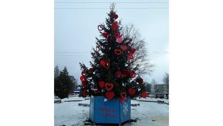 Брянцы раскритиковали «любвеобильную елку» в Фокинском районе
