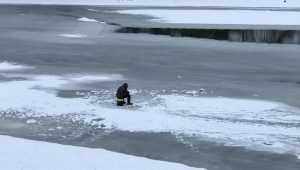 Брянский рыбак поиграл в русскую рулетку на Десне