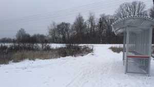 Жители Любохны сочли опасной новую остановку на железной дороге