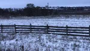 Брянской области 11 декабря пообещали снег и 2-градусное тепло