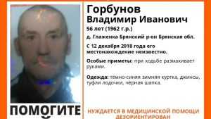 В Брянском районе пропал без вести 56-летний Владимир Горбунов