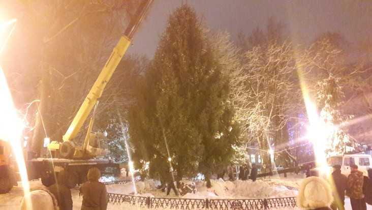 В Круглом сквере Брянска установили главную ёлку города