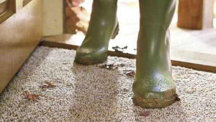 В Жуковке таджик ударил ножом не снявшего обувь земляка