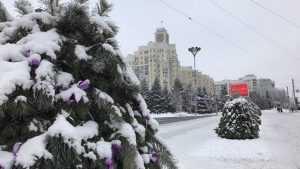 В Брянской области 18 декабря похолодает до 18 градусов мороза