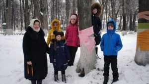 В парке Почепа замерзавшие деревья согрели тёплыми шарфами