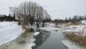 В Брянскую область 4 декабря вернётся оттепель с мокрым снегом