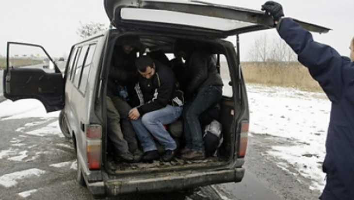 Силовики перекрыли канал нелегалов из Белоруссии на Брянщину