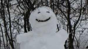 Брянску в воскресенье обещают сильный снег