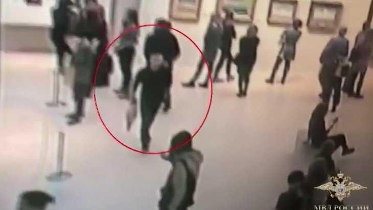 Полиция опубликовала видео похищения картины Куинджи