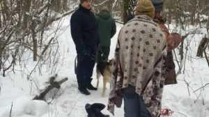 В Бежице спасли провалившуюся в яму собаку