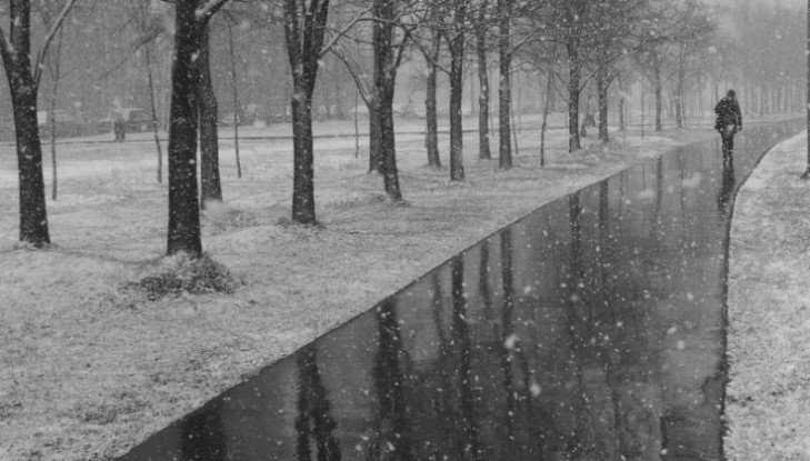 Брянской области 30 января пообещали дождь и 3-градусное тепло