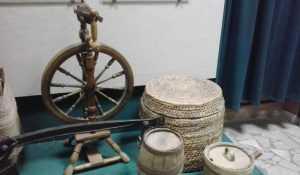Брянские депутаты поддержали новый закон о музеях