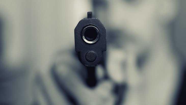 В Брянске из пневматики расстреляли стоявший во дворе автомобиль