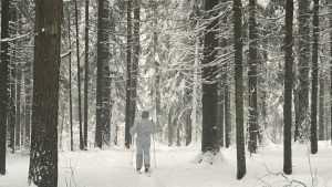 В Брянской области похолодает до 20 градусов мороза