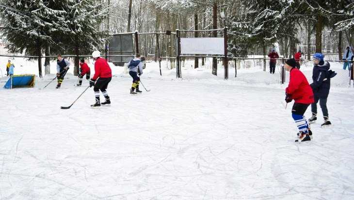 Старт открытого хоккейного турнира в Брянске перенесли на две недели