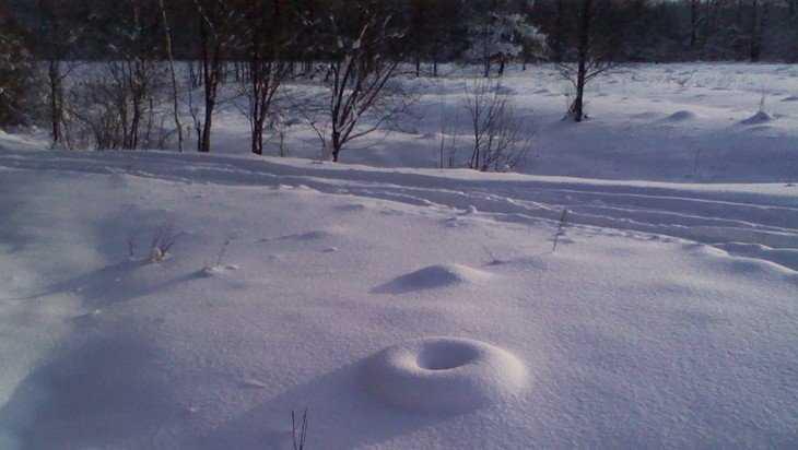 В Брянске сфотографировали забавный снежный бублик