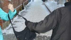В Брянске полицейские задержали уличного грабителя
