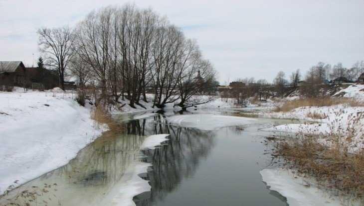 В Брянскую область 17 января вернётся оттепель с мокрым снегом