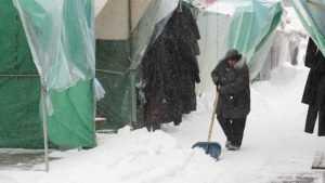Брянские власти отчитались о работе на новогодних праздниках