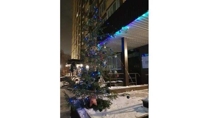 В Брянске на улице Репина перед Новым годом спилили наряженную елку