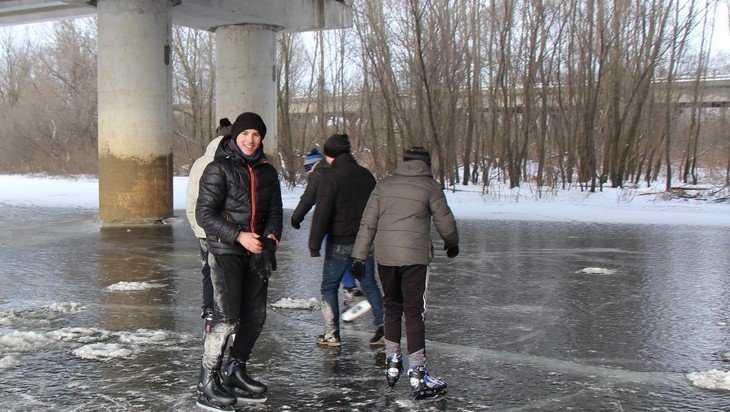 В Брянске вспомнили самую диковинную идею власти – продать Черный мост