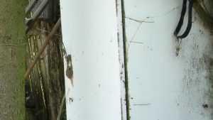 Брянский старик поселился на зиму в железный ящик в заброшенном селе